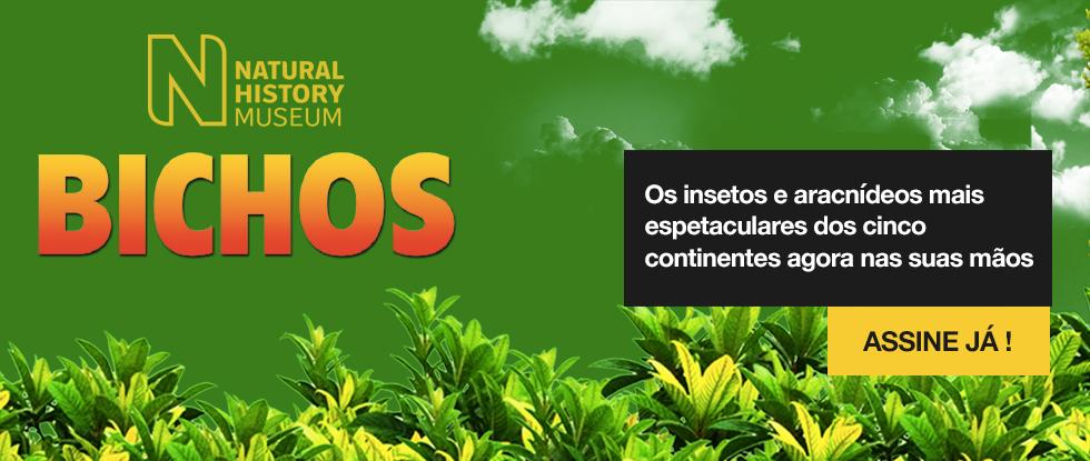 http://www.rbacoleccionaveis.com/wp-content/uploads/2019/09/carrusel_PT2019_bichos-1.jpg