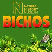 homepage_PT_bichos 2